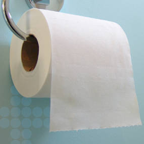 Bathroom Tissue Scott 100Percent Recycled 2 Ply Bathroom Tissue 4 110 X 4 Sheets .