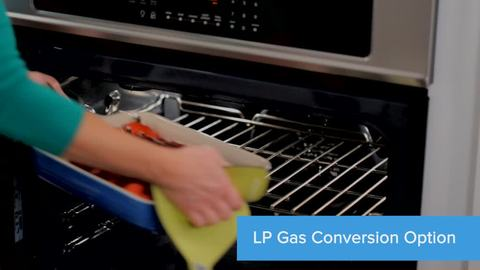 Lp Gas Conversion Option