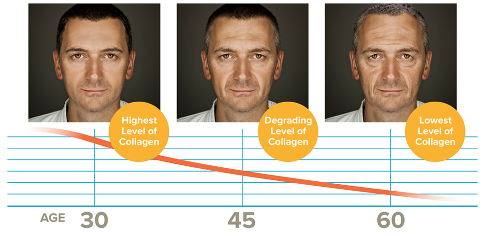Highest Level of Collagen, Age 30 / Degrading Level, Age 45 / Lowest Level, Age 60