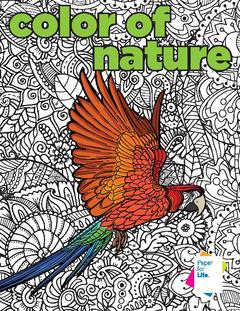 View Color of Nature Coloring Book PDF