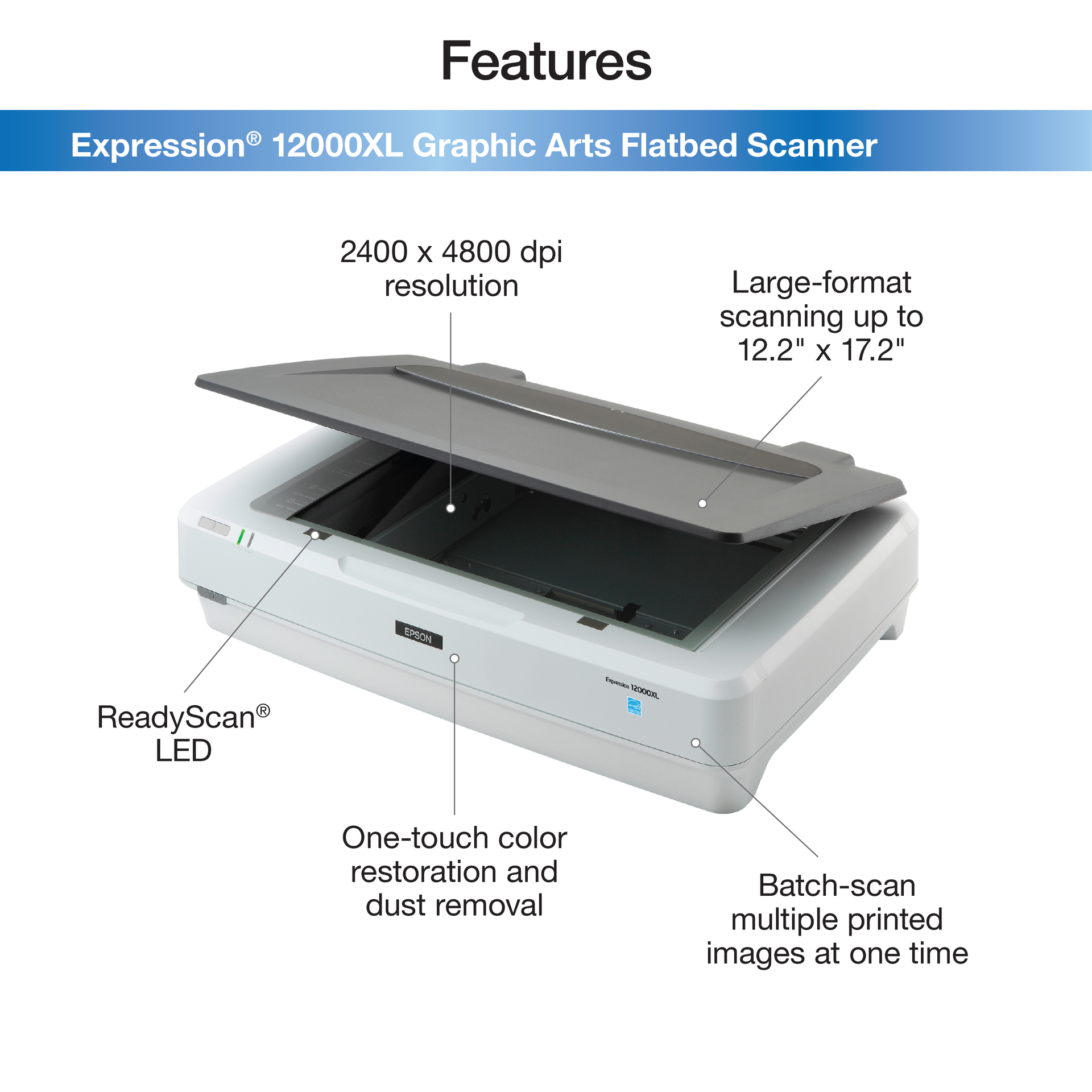 Epson Expression 12000XL-GA Flatbed Scanner, Gray/White
