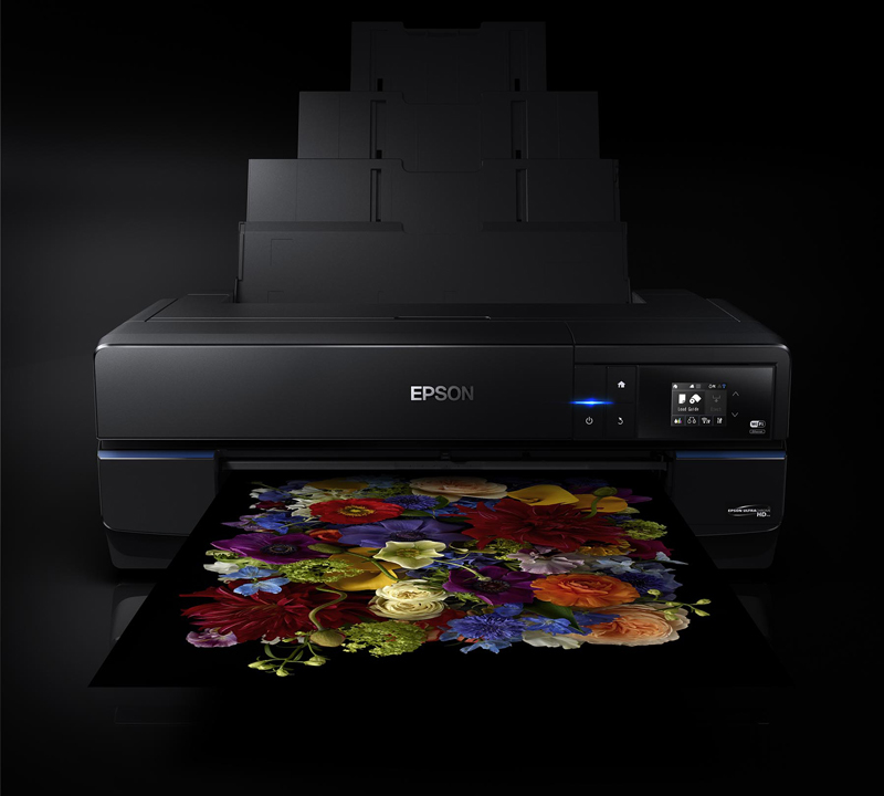 Epson SureColor P800 Designer Edition - large-format printer - color